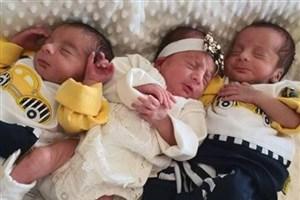 سومین نوزادهای سه قلو پس از کرونا در قم متولد شدند