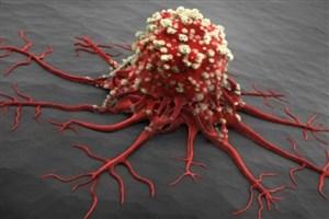 سلاح سلول سرطانی در برابر ویروس چیست؟