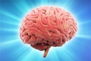 منفیبافی مغز را از بین میبرد