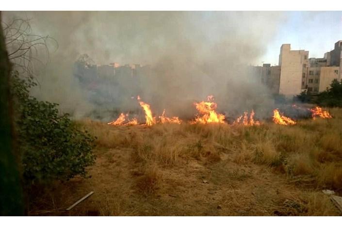 آتش سوزی پارک های تهران