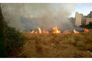 آتش سوزی در زمین مجاور بازار گل ابوذر