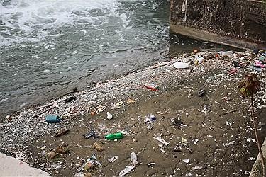 طبیعت جاندار مانند انسانها دارای حس است و اگر در اکوسیستم آنها به واسطه ریختن زباله، خللی ایجاد شود طبیعت بیماری می شود و توان زادآوری و زایش را از دست می دهد.